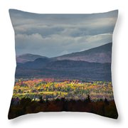 Painting With Autumn Light Throw Pillow