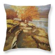 Autumn Light2 Throw Pillow