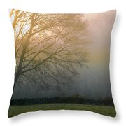 Autumn Maple At Dawn Throw Pillow