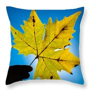 Autumn Maple Leaf In The Sun Throw Pillow