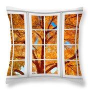 Autumn Maple Tree View Through A White Picture Window Frame Throw Pillow