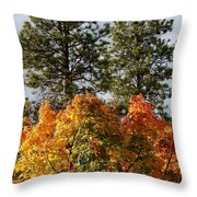 Autumn Maple With Pines Throw Pillow