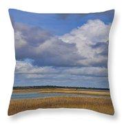 Autumn Marsh At Shell Island Throw Pillow
