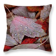 Autumn Melange Throw Pillow