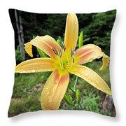 Autumn Minaret Daylily Throw Pillow