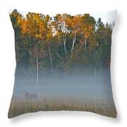 Autumn Mist Throw Pillow