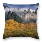 Autumn Mists Throw Pillow