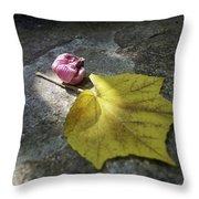Autumn Moment Throw Pillow
