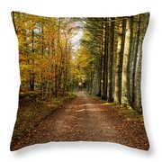 Autumn Mood In The Forrest Throw Pillow