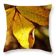 Autumn Moon Throw Pillow by JAMART Photography