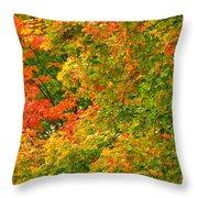 Autumn Mosaic Nj Throw Pillow