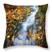 Autumn Mountain Stream Throw Pillow