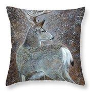 Autumn Muley Throw Pillow