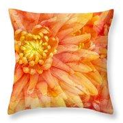 Autumn Mums Throw Pillow by Heidi Smith