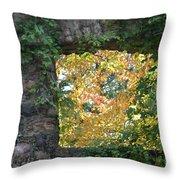 Autumn Naturally Framed Throw Pillow