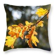 Autumn Oak Leaves Throw Pillow