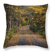 Autumn On Bike Trail  Throw Pillow