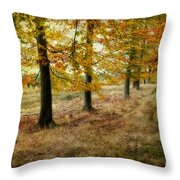 Autumn On Cannock Chase Throw Pillow