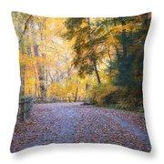 Autumn On Forbidden Drive Throw Pillow