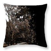 Autumn On Maple Road Throw Pillow
