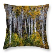 Autumn On Mcclure Pass Throw Pillow