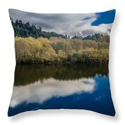 Autumn On The Klamath 10 Throw Pillow