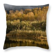 Autumn On The Klamath 3 Throw Pillow