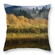 Autumn On The Klamath 4 Throw Pillow