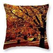 Autumn On Wombat Hill II Throw Pillow
