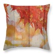Autumn Outdoors 2 Of 2 Throw Pillow