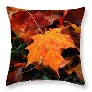 Autumn Palette  Throw Pillow