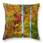 Autumn Palette Throw Pillow by Mary Amerman