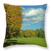 Autumn Panorama 1 Throw Pillow