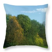 Autumn Panorama 3 Throw Pillow