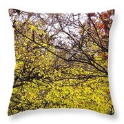 Autumn Panorama Throw Pillow