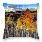 Autumn Pass Throw Pillow
