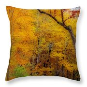 Autumn Peak Colors Throw Pillow