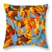 Autumn Petals Throw Pillow
