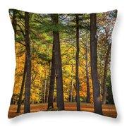 Autumn Pines Square Throw Pillow