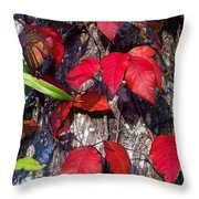 Autumn Poison Ivy Throw Pillow