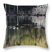 Autumn Pond Throw Pillow