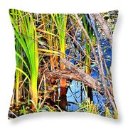 Autumn Pond Throw Pillow