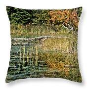 Autumn Pond Scene Throw Pillow