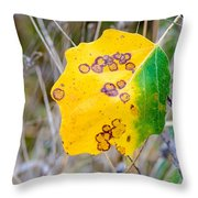 Autumn Poplar Leaves Throw Pillow