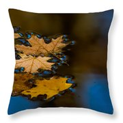 Autumn Puddle Throw Pillow