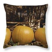 Autumn Pumpkins Throw Pillow by Amanda Elwell