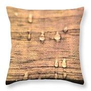 Autumn Rain On Wood Throw Pillow