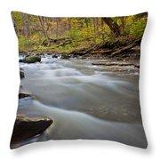 Autumn Rapids Throw Pillow