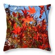 Autumn Reach  Throw Pillow