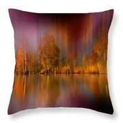 Autumn Reflection Digital Photo Art Throw Pillow